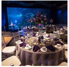 An aquarium wedding! Awesome idea.