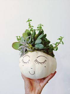Fill a pumpkin up with succulents!