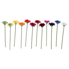 SNÄRTIG Artificial flower - IKEA, for the talk table( i will put it on the vase with a ribbon)