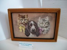 Hey, I found this really awesome Etsy listing at https://www.etsy.com/listing/190043938/vintage-cats-dogs-picture