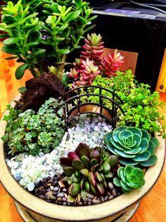 60 Create Succulent Garden Ideas 35