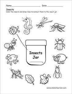 fun insects activity for kids - Modern Dr Seuss Activities, Insect Activities, Preschool Learning Activities, Preschool Science, Kindergarten Worksheets, Worksheets For Kids, April Preschool, Preschool Ideas, Family Activities