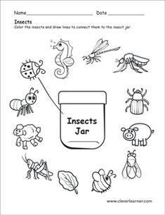 Butterfly life cycle preschool worksheet. #preschool #