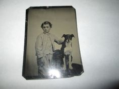 1800s Tintype Boy and Dog Dog with Perked Up Ears | eBay