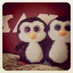 my baby penguins. ΚΔΧ.