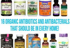 16 Organic Antibiotics And Antibacterials That Should Be In Every Home! | LongevityBox