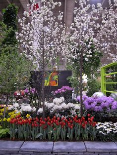 A glimpse of Otium at Canada Blooms 2013