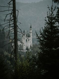 Architecture Images, Building Architecture, Neuschwanstein Castle, Amazing Buildings, Hd Photos, Best Funny Pictures, Travel Inspiration, Germany, Europe