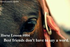 Horse Lesson #004