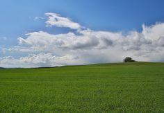 inverse by Jirí Výbora Golf Courses, My Photos, Clouds, Green, Blue, Outdoor, Outdoors, Outdoor Living, Garden