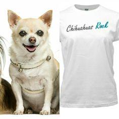 a14f1ec68 Chihuahuas Rock! ! ! ! Www.Luckeypetsclothingandaccessories.com