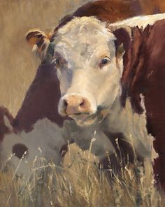Tranquility by Daria Shachmut Oil ~ 24 x 20 Cow Photos, Cow Pictures, Paintings I Love, Animal Paintings, Hereford Cattle, Painting Competition, Farm Art, Cow Painting, Cow Art