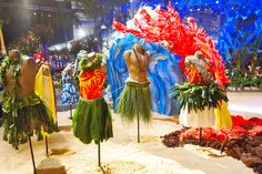 philadelphia flower show 2012 | Philadelphia Flower Show 2012: Hawaiian Photos & Sneak Preview!
