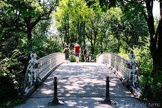 Summer in New York City -- Central Park  Read more:  http://www.asherworldturns.com/summer-in-new-york-city/