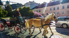 Elegancia la de Salzburgo