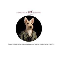 Our team member and beloved Scottish Terrier, Sienna. #art #photography #digitalart #photomanipulation #scottishterrier #pet #dog #laresaperlman #collaborativeartcreations Scottish Terrier, Photo Manipulation, Digital Art, Dogs, Pearl, Scottish Terriers, Scottie Dogs, Doggies, Photo Editing