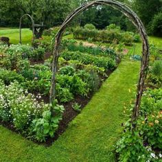 Beautiful Vegetable Garden 18 #beautifulvegetablegardening