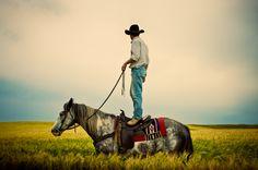 Cowboy, horse, Nokota, cowboy standing on horse, field