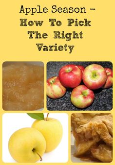 Apple Season - How To Pick The Right Variety via Better Hens and Gardens Best Apples For Applesauce, Cooking Tips, Cooking Recipes, Apple Varieties, Apple Season, Simply Organic, Apple Harvest, Backyard Farming, Savoury Dishes
