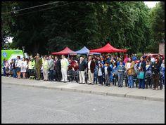 El Vecinal: Bulnes (CHILE), jueves 28 de julio de 2016