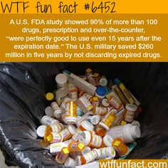 WTF Fun Facts is updated daily with interesting & funny random facts. We post about health, celebs/people, places, animals, history information and much more. New facts all day - every day! Wtf Fun Facts, Funny Facts, Random Facts, Odd Facts, Did You Know Facts, Things To Know, The More You Know, Good To Know, Interesting Information