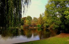 Pond in Vienna City Park by Rainer Leiss on 500px