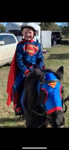 Great for fancy dress competitions, lycra face mask with Superman emblem Fancy Dress Competition, Horse Fly, Face Masks, Superman, Horses, Facial Masks, Horse, Words, Masks