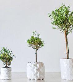 Vasos de planta em origami que evoluem à medida que sua planta cresce.