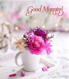 - Best Picture For salute tout le monde For Your Taste You are looking for something, and it is goi - Good Morning Tuesday, Good Morning Msg, Special Good Morning, Good Morning Texts, Happy Morning, Good Morning Picture, Good Morning Messages, Morning Pictures, Good Morning Images