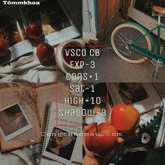 Stranger Things photo edit filter with VSCO Cam