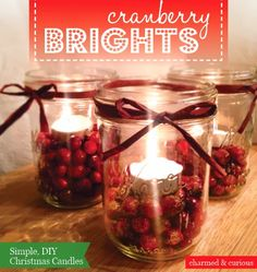 Charmed and Curious: Cranberry Brights