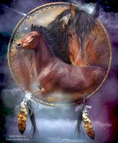 CAROL CAVALARIS ~ Dream Catcher Series & Wildlife Animal Spirits - Totem Talk