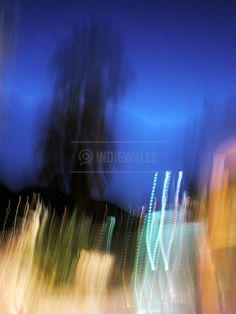Palm City Photo Art by Lollie Ortiz