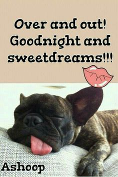 good night i love you daughter quotes / good night daughter quotes love you - good night i love you daughter quotes Good Night Funny, Good Night Love Quotes, Good Night I Love You, Cute Good Morning Quotes, Good Night Prayer, Good Night Everyone, Good Night Blessings, Good Night Gif, Good Night Messages
