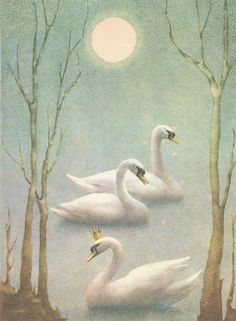 Swan Lake – 15 фотографий