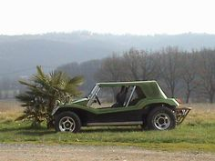 APAL BUGGY (from France)