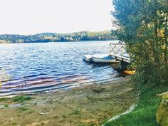 Mysigt vid sjön #sjö #kungsbacka #sweden #bedandbreakfast #sweden #halland