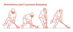 Lacrosse Scooping is a way of gaining ball possession when the lacrosse ball drops to the ground. Usually, the athlete bends the knee while facing the ball, aiming low, and moves the stick close to the ball where he or she scoops it quickly and forces it into the pocket of the lacrosse stick and at the same time preventing the ball from rolling back. Downloads online #sports #lacrosse