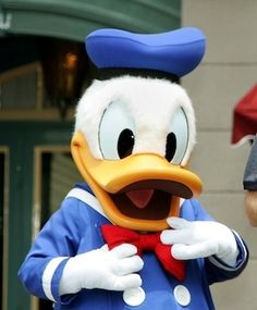 Magalon claimed that while on vacation in May 2008 at Walt Disney World, she was molested by a man dressed in Donald Duck costume.