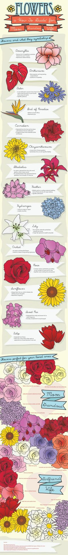 """A must read: Infographic: Choosing the Right Flower for the Right Occasion. You can say a lot with a simple flower. In fact, you might be saying more than you realize. Flowers have a lot of meaning, and this """"how to guide"""" can help you discover a little more about these beautiful gifts. The traditional rose, for example, can say many different things depending on the color and the number you send. Ok, this is so cool! I am so into the meaning of flowers and have several books on the subject…"""