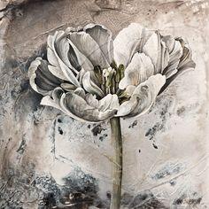Linda Thompson, artist, original paintings at White Rock Gallery Linda Thompson, Artist Aesthetic, Art Drawings Sketches, White Art, Flower Art, Painting & Drawing, Watercolor Art, Original Paintings, Art Gallery