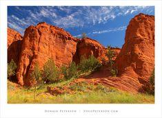 Jemez Mountains   Chama, New Mexico