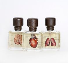 """Van Der Lichaam is a dutch aromatherapy company based out of Delft, Holland. The rosemary + bergamot fragrance is blended to improve metal clarity. The bottle features a brain illustration. The eucalyptus + lemon fragrance is blended to improve respiratory health. The bottle features an illustration of a pair of lungs. """""""