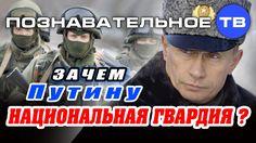 Зачем Путину Национальная гвардия? (Познавательное ТВ, Артём Войтенков)
