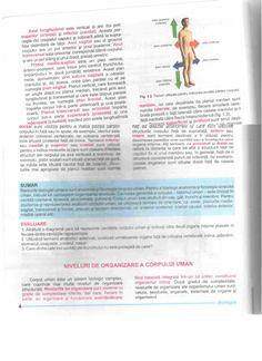 manual biologie clasa a 11-a;autor Elena Hutanu;sistemul nervos si analizatorii