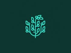Icons and Logos by Tim Boelaars | Awwwards