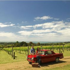 A new gourmet touring option has launched in the Mornington Peninsula (Victoria, #Australia), MP Experience. Led by an experienced local tour manager, guests will have exclusive opportunities to learn about the gourmet fare of the Peninsula, including a private tutored tasting with a winemaker, going behind the scenes at a strawberry farm and indulging in hand crafted artisan chocolates.
