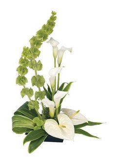 Pretty sympathy design. Bells of Ireland, Anteriums, and Calla Lilies.