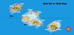 ko-ha-overview-v5-avec-wm.jpg (1488×723)