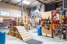 Blue Collar Working Dog: A Combined Retail Space and Agility Course